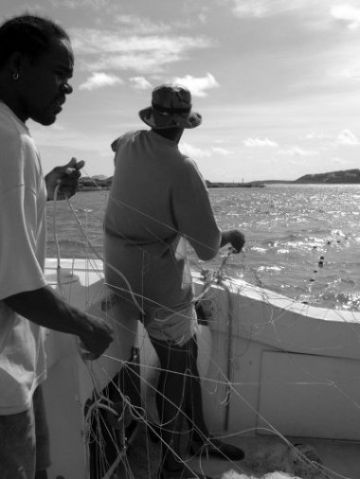James Gumbs (in the hat) of the Department of Fisheries and Marine Resources, Anguilla, sets a BCG-funded turtle net during TCOT sampling work in Anguilla.