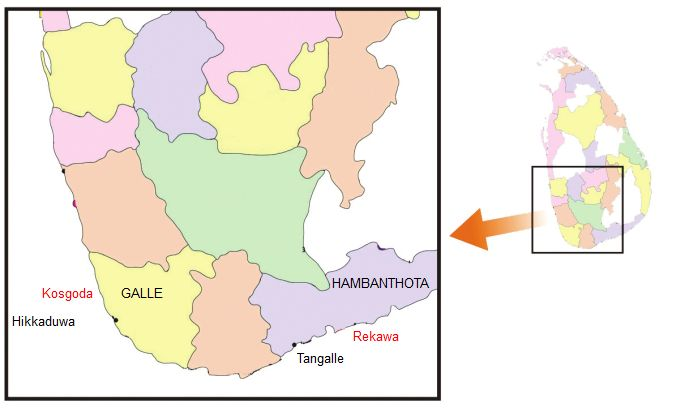 Figure 1. Map showing the TCP in situ marine turtle conservation sites (in red text) in Sri Lanka.